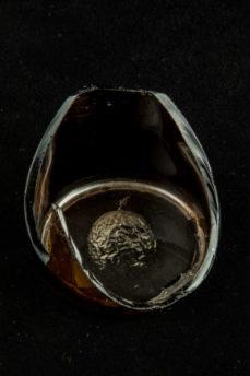 Ambrotipo sobre botella de cerveza rota que muestra imagen de producto de la canasta familiar